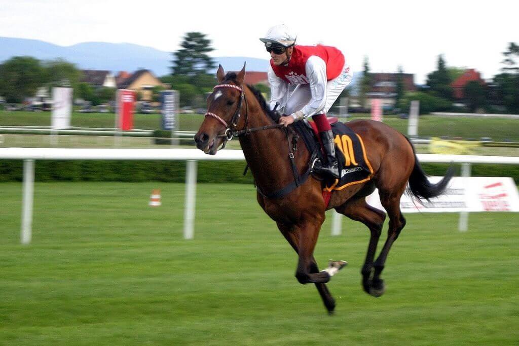 bet365 hobuste võiduajamiste panuste korraldamine